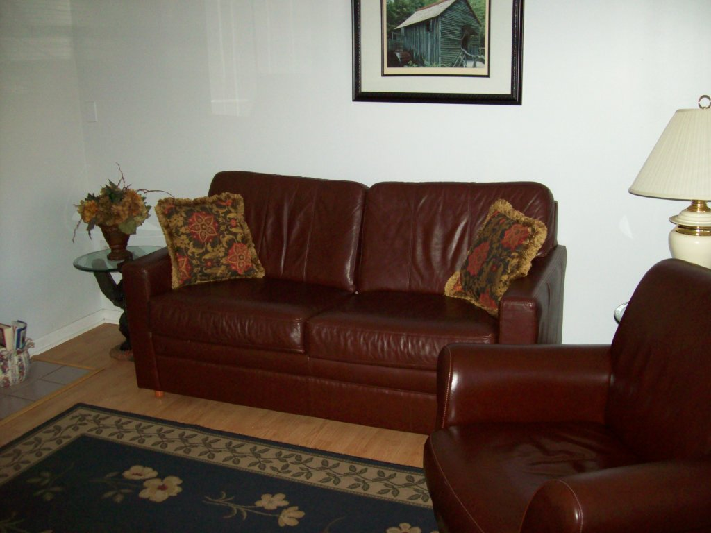Photo of a Gatlinburg Condo named 306 - This is the second photo in the set.