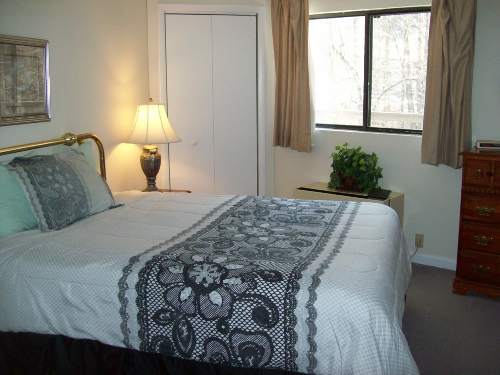 Photo of a Gatlinburg Condo named 4b - This is the third photo in the set.