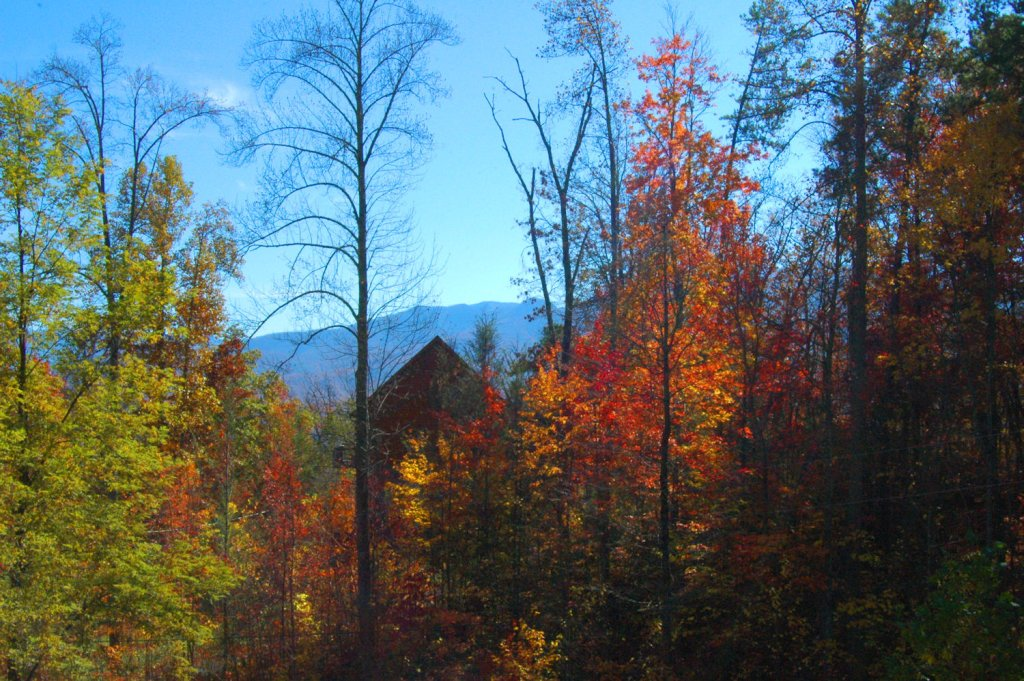 Photo of a Gatlinburg Cabin named Life Of Luxury #12 - This is the thirty-third photo in the set.