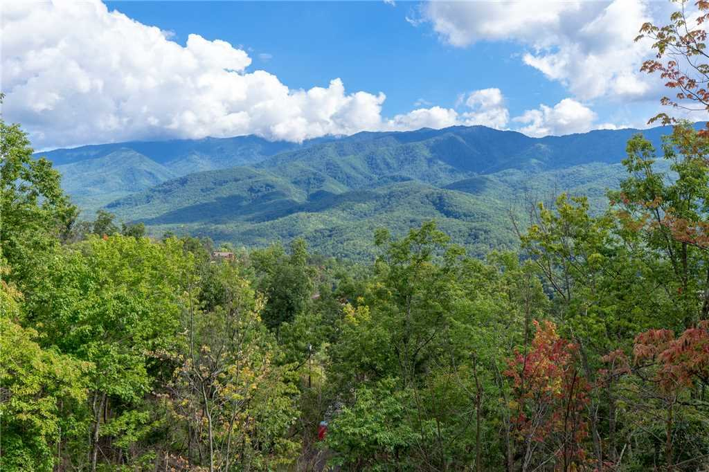 Photo of a Gatlinburg Cabin named Dancing Bear Lodge - This is the fortieth photo in the set.