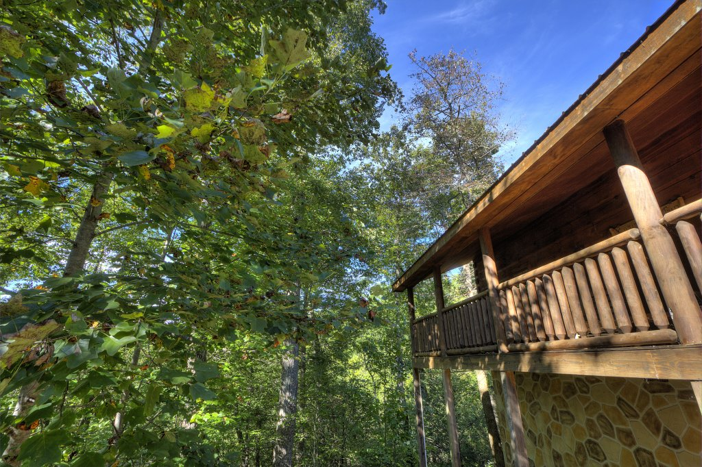 Photo of a Gatlinburg Cabin named A Beary Tale #258 - This is the thirty-seventh photo in the set.
