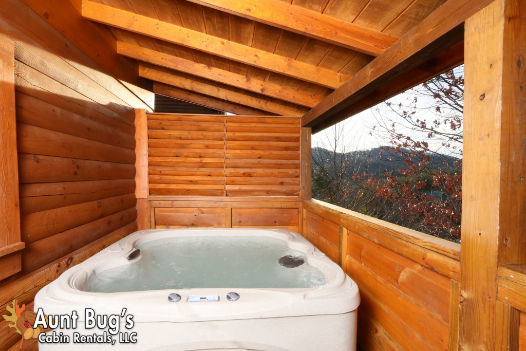 Photo of a Pigeon Forge Cabin named Shades Of The Past #230 - This is the ninth photo in the set.