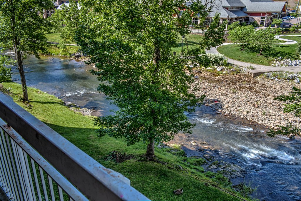 Photo of a Pigeon Forge Condo named Bear Crossing 204 - This is the twenty-second photo in the set.
