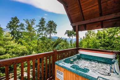 Bear Hugs, 1 Bedroom, Pool Access, Views, Pet Friendly, Wifi, Sleeps 4