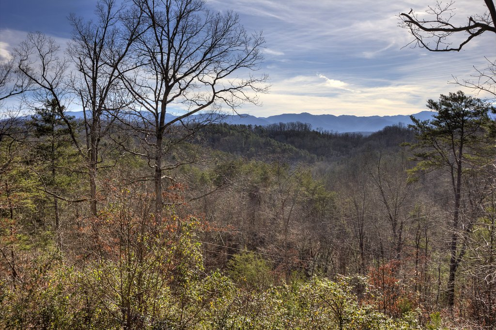 Photo of a Sevierville Cabin named I Love View #136 - This is the thirteenth photo in the set.