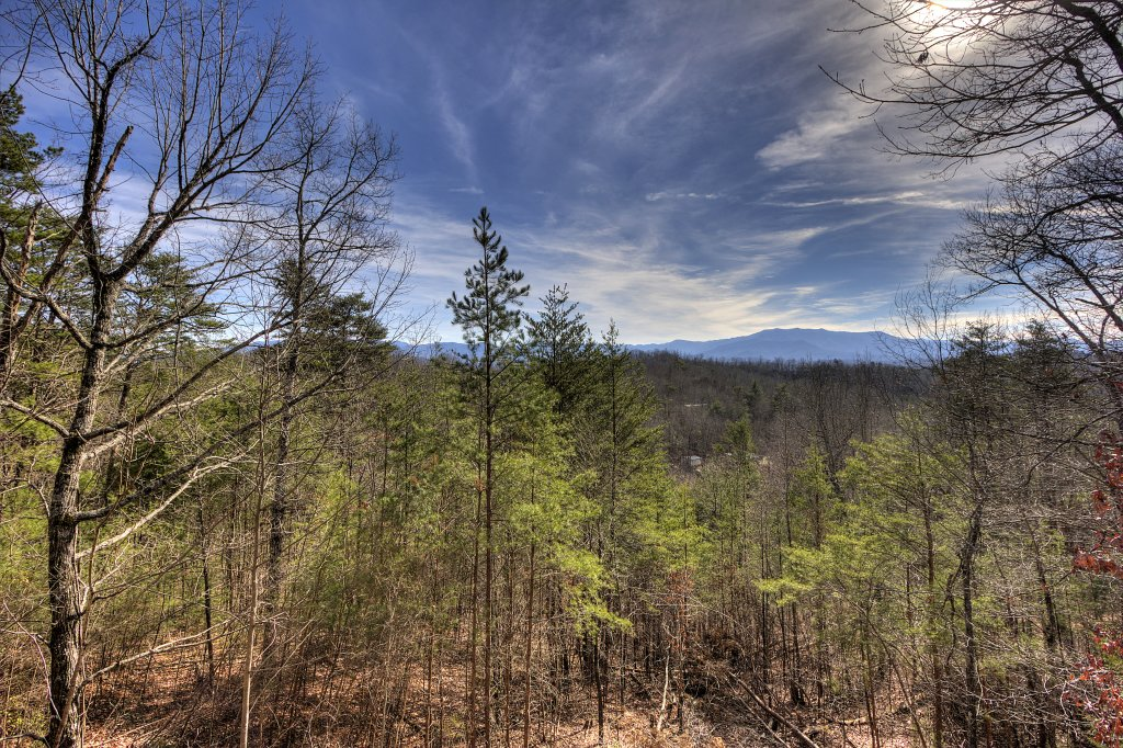 Photo of a Sevierville Cabin named A Panoramic View 2 #139 - This is the fourteenth photo in the set.