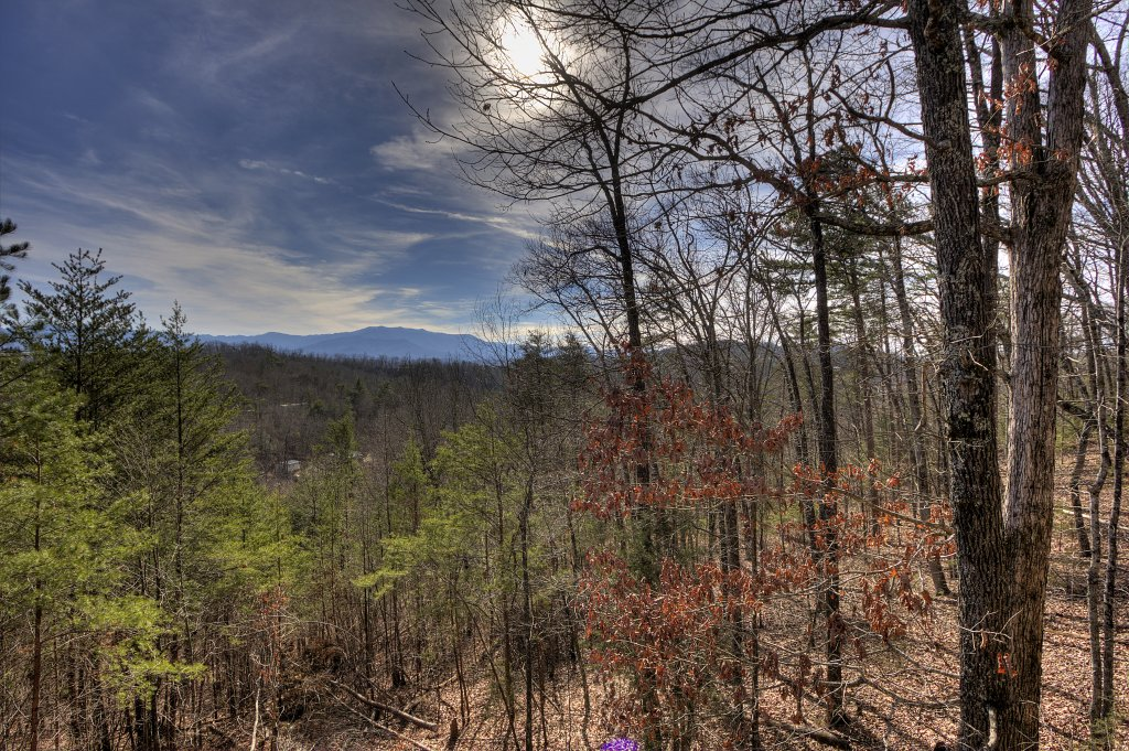 Photo of a Sevierville Cabin named A Panoramic View 2 #139 - This is the thirteenth photo in the set.