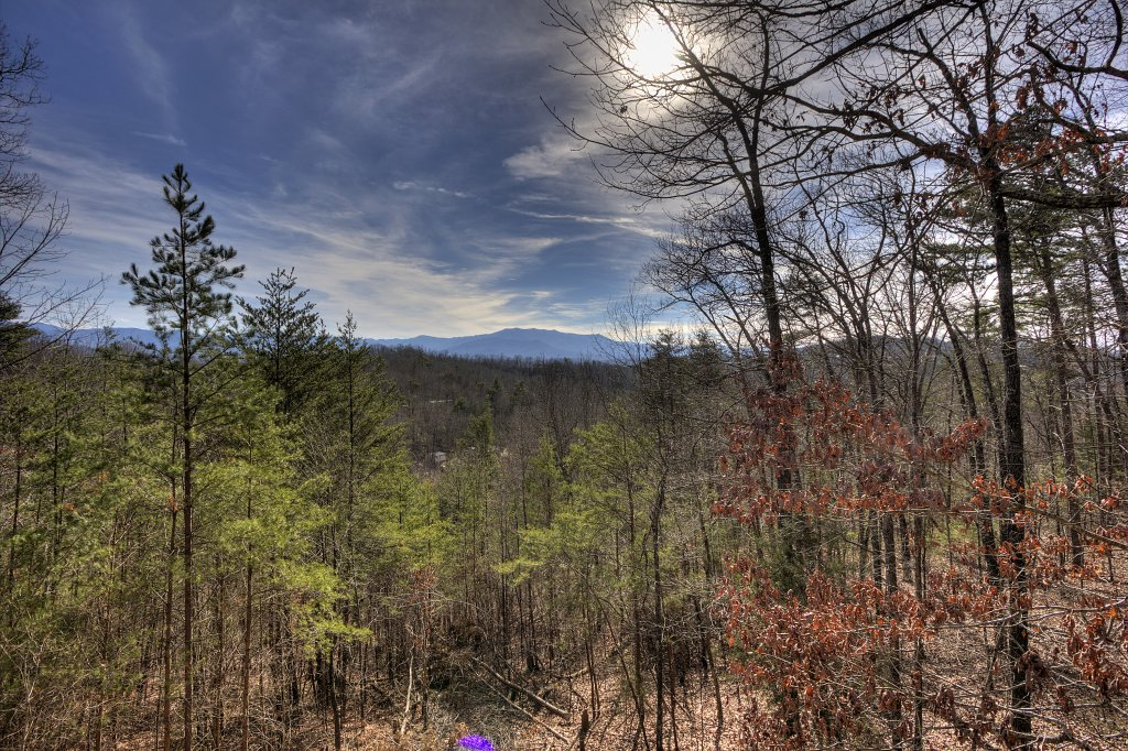 Photo of a Sevierville Cabin named A Panoramic View 2 #139 - This is the fifteenth photo in the set.
