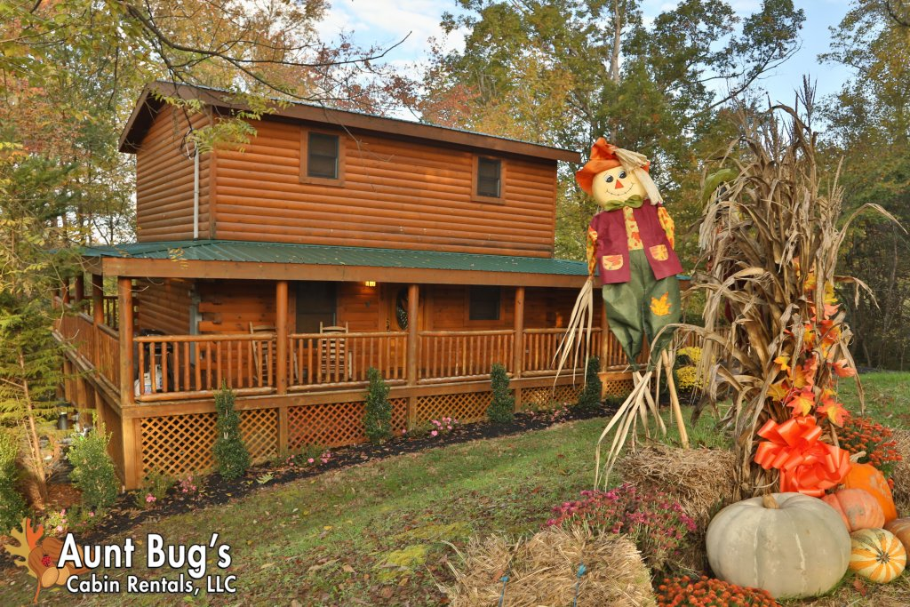 Photo of a Pigeon Forge Cabin named Skinny Dippin' #261 - This is the fourteenth photo in the set.