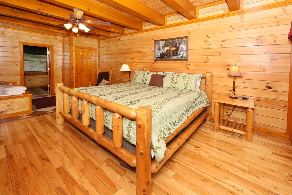 Photo of a Sevierville Cabin named Mountain Movie Inn - This is the seventeenth photo in the set.