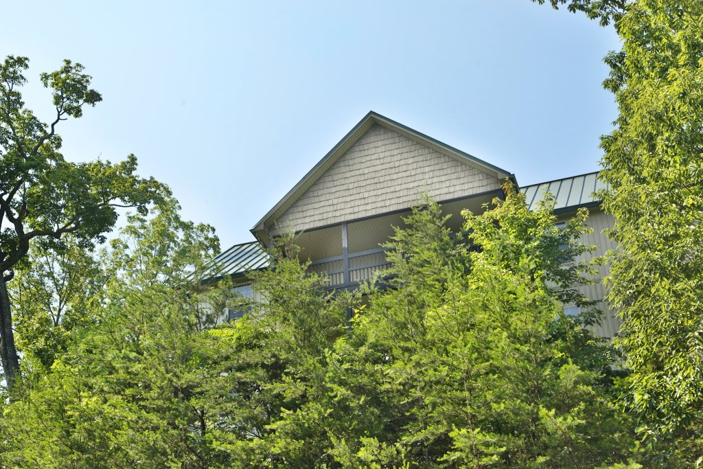 Photo of a Pigeon Forge Chalet named Pinnacle View 7b - This is the third photo in the set.