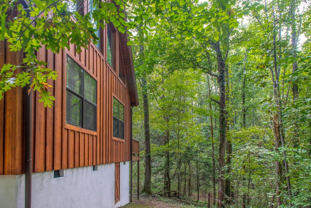 Photo of a Sevierville Cabin named Friendly Bear Cabin - This is the twenty-seventh photo in the set.