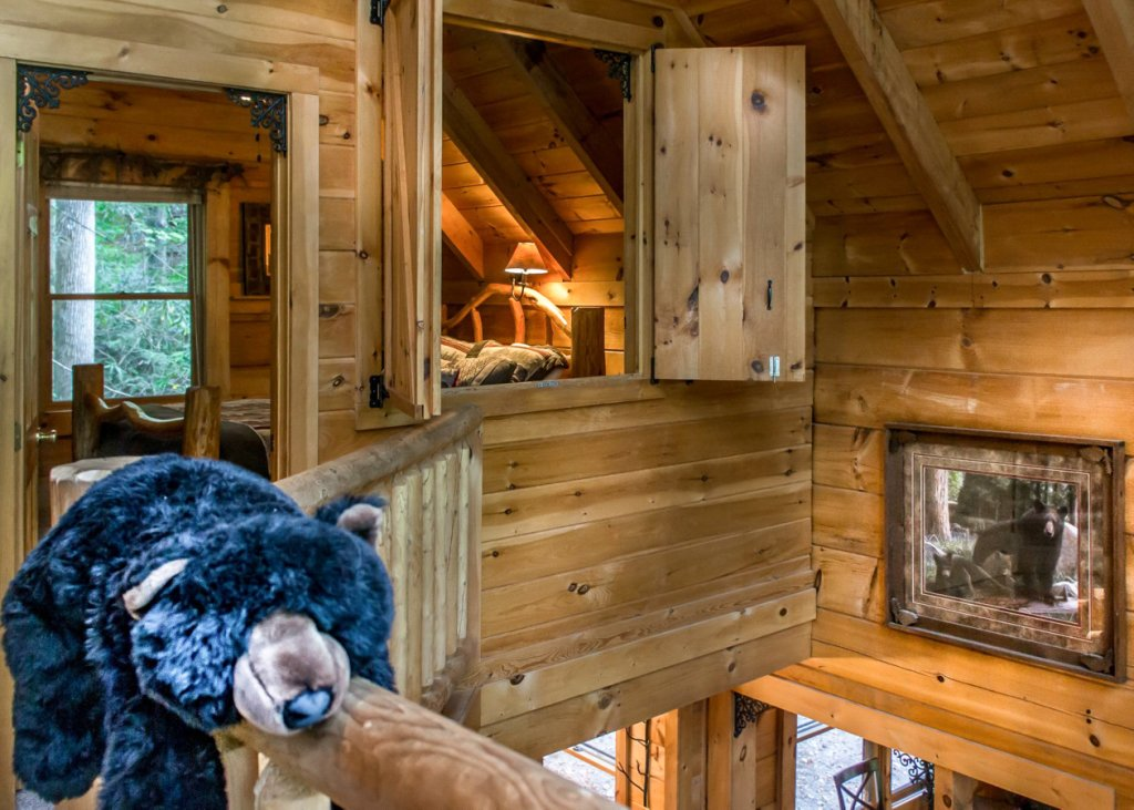 Photo of a Pigeon Forge Cabin named Bear Paw Trail #15 - This is the twelfth photo in the set.