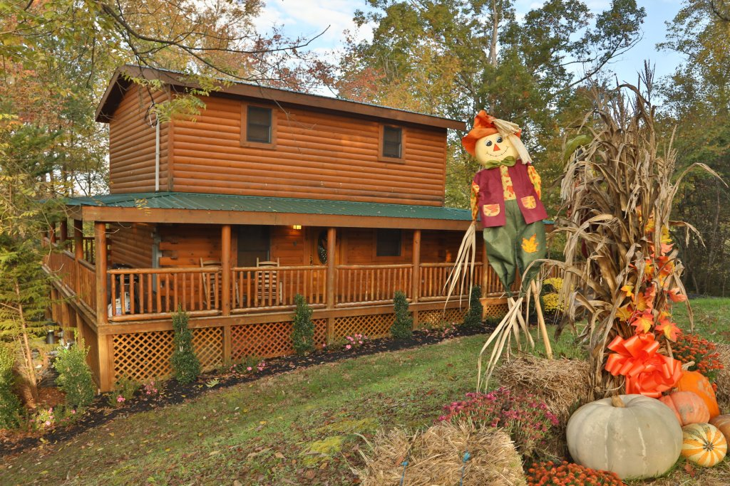 Photo of a Pigeon Forge Cabin named Skinny Dippin' #261 - This is the first photo in the set.
