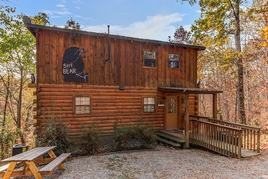 2 Bedroom, 2 Bath, Pet-friendly Deluxe Cabin For 8. Semi-secluded With A Hot Tub