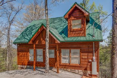 1 Bedroom, 1 Bath Value Cabin With A Hot Tub, Pool Table, & Incredible View.