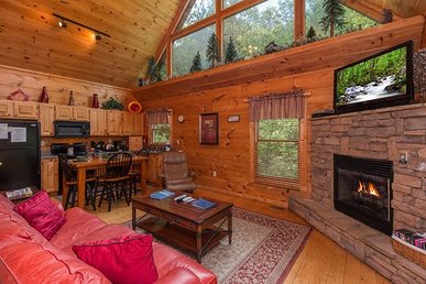 1 Bedroom, 1 Bath, Semi-secluded, Deluxe Cabin For 4 With Games & A Hot Tub.