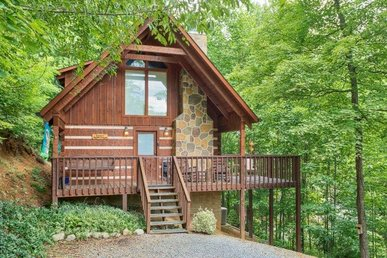 A 1 Bedroom, Semi-secluded Cabin With A Wood Burning Fireplace And Smart Tvs.