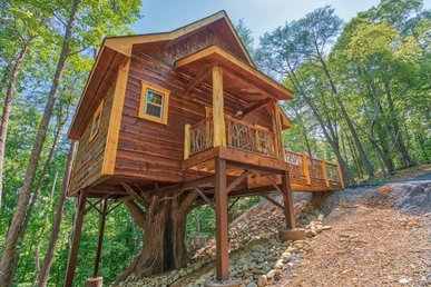 Unique Studio Luxury Treehouse With A Gas Fireplace & A Hot Tub, In A Resort.