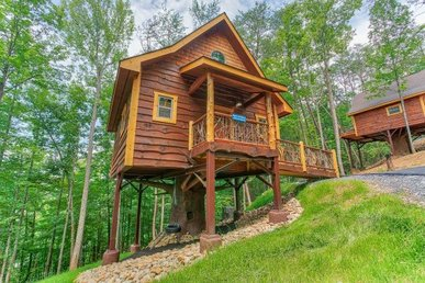 Luxury Studio Style Treehouse For 6 With A Heart-shaped Jacuzzi And A Hot Tub.