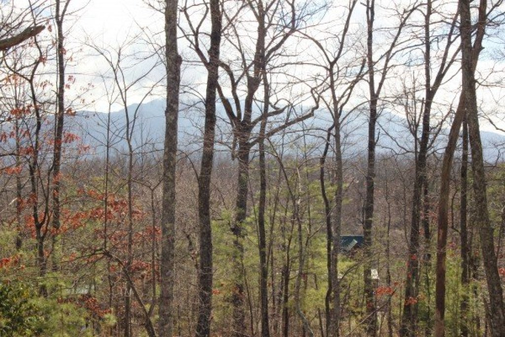 Photo of a Gatlinburg Cabin named Bear View Lodge - This is the twentieth photo in the set.