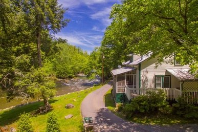 Streamside Value Cottage For 8, Easy To Access From Town, Semi-secluded.