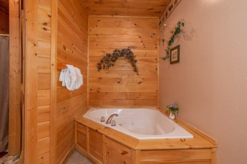 Photo of a Sevierville Cabin named Bearly In The Mountains - This is the twelfth photo in the set.