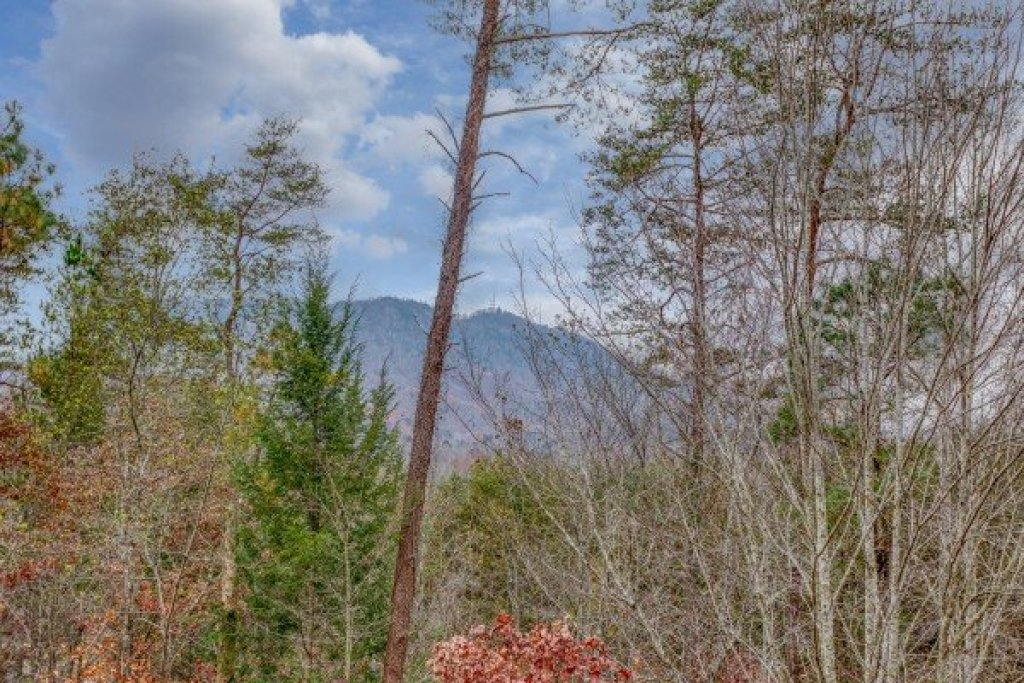 Photo of a Sevierville Cabin named Bearly In The Mountains - This is the twenty-ninth photo in the set.