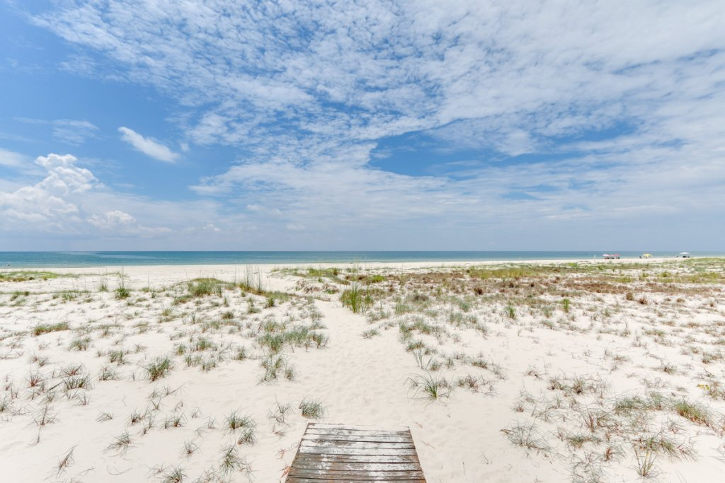Photo of a Cape San Blas House named Sea's Life - This is the forty-ninth photo in the set.