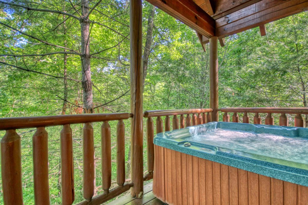 Photo of a Gatlinburg Cabin named Beary Secluded #296 - This is the second photo in the set.