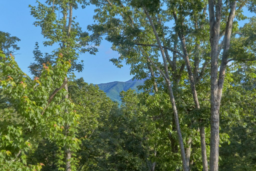 Photo of a Gatlinburg Cabin named City Slicker - This is the fifty-second photo in the set.