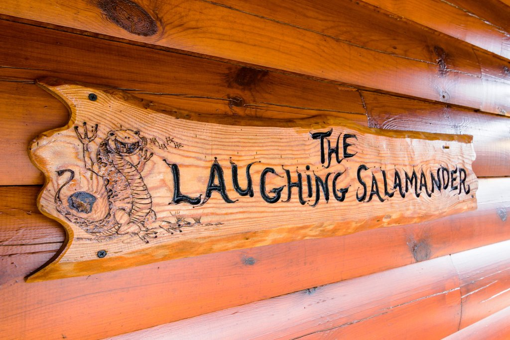 Photo of a Sevierville Cabin named The Laughing Salamander Cabin - This is the twenty-eighth photo in the set.