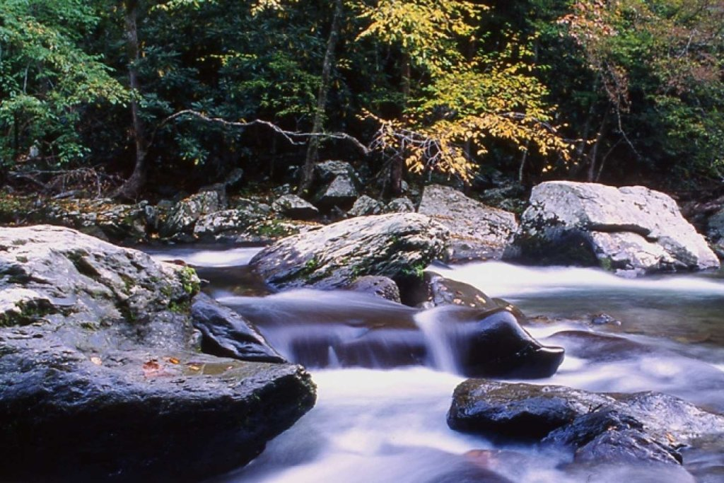 Photo of a Gatlinburg Cabin named Waterfall Cabin - This is the forty-second photo in the set.