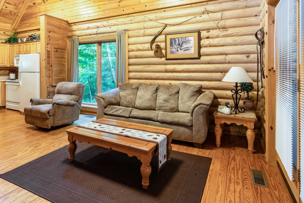 Photo of a Sevierville Cabin named Bear Naked - This is the second photo in the set.