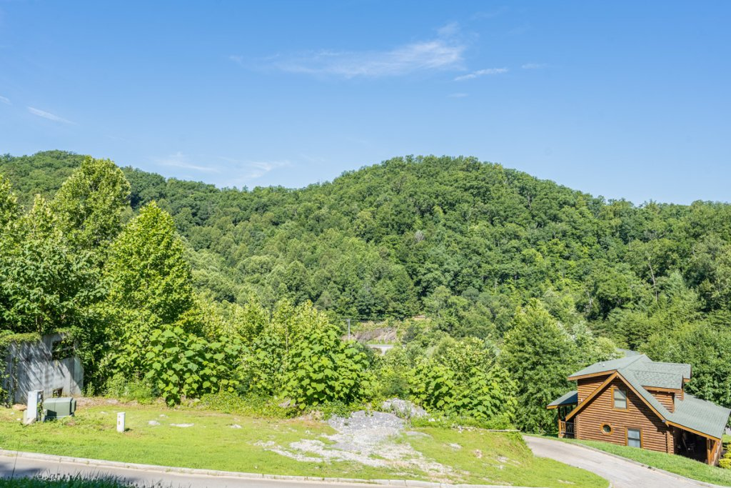 Photo of a Sevierville Cabin named Bear Naked - This is the twenty-eighth photo in the set.