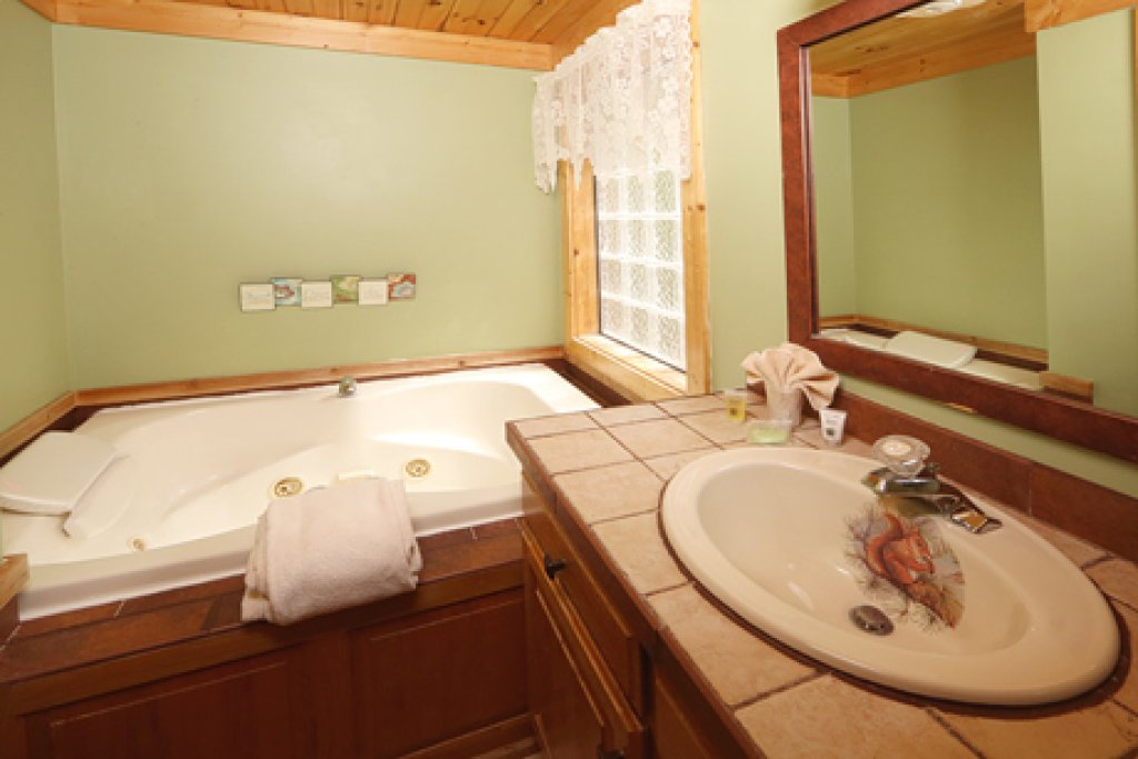Photo of a Sevierville Cabin named Parkside Haven - This is the sixth photo in the set.