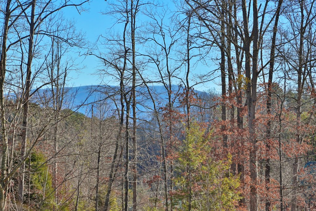 Photo of a Gatlinburg Cabin named Skinny Dippin - This is the seventeenth photo in the set.
