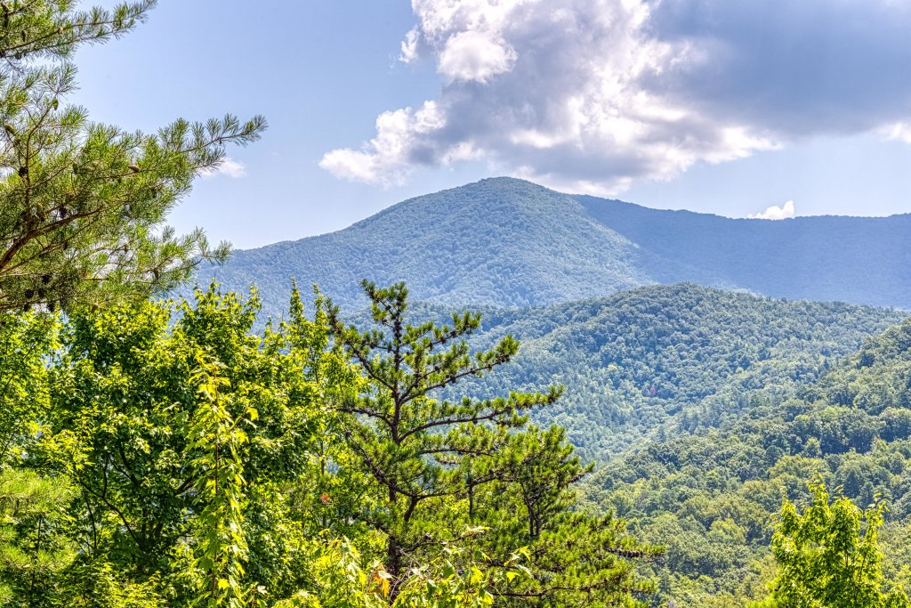 Photo of a Sevierville Cabin named Cove Mountain Retreat Cabin - This is the forty-third photo in the set.