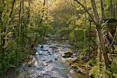 Large 2 Bedroom Creekside Cabin In Pigeon Forge With Pool Table & Seclusion!