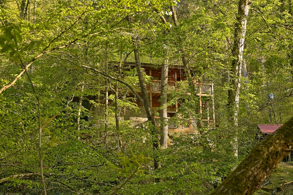 Photo of a Sevierville Cabin named Whispering Waters #208 - This is the thirtieth photo in the set.