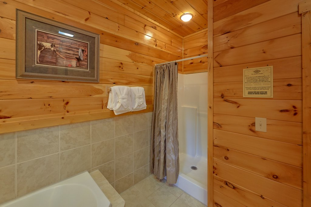 Photo of a Gatlinburg Cabin named Buckwild - This is the twenty-second photo in the set.