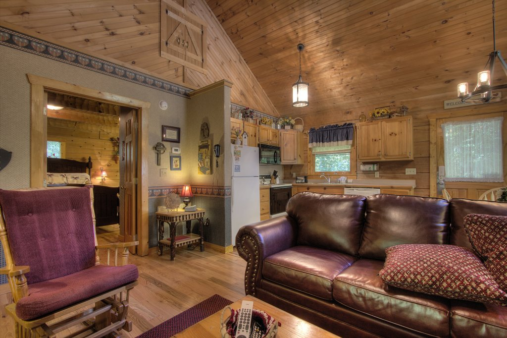 Photo of a Sevierville Cabin named Americana #115 - This is the fourth photo in the set.