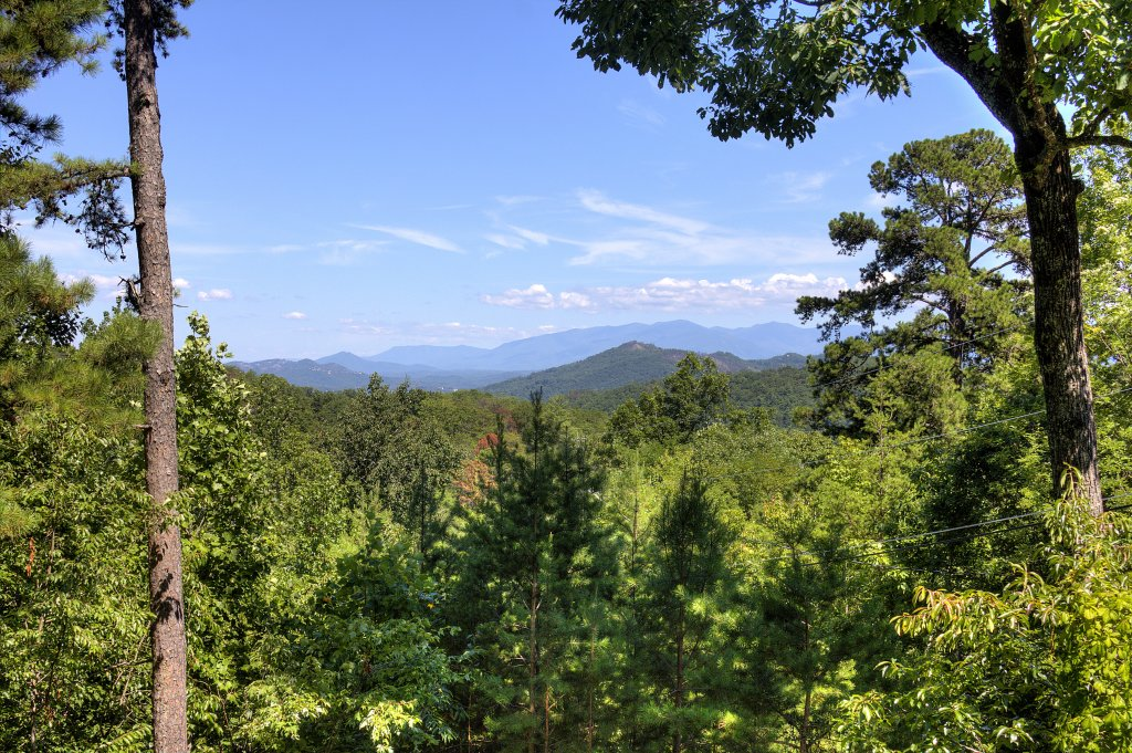 Photo of a Sevierville Cabin named Apple Bear View #116 - This is the eighteenth photo in the set.