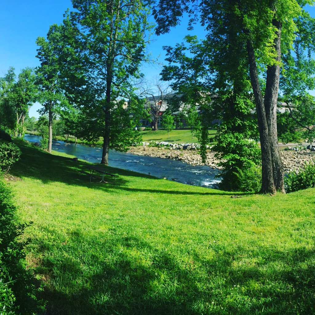 Photo of a Pigeon Forge Condo named Bear Crossing 203 - This is the twenty-third photo in the set.