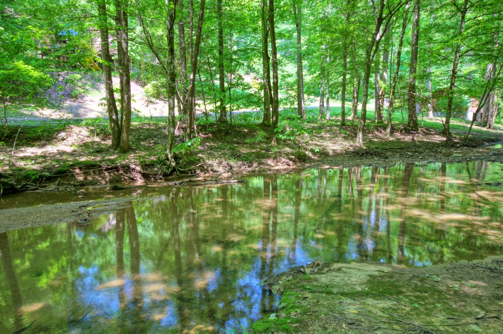 Photo of a Sevierville Cabin named The Promise At Cool Creek #130 - This is the eighth photo in the set.
