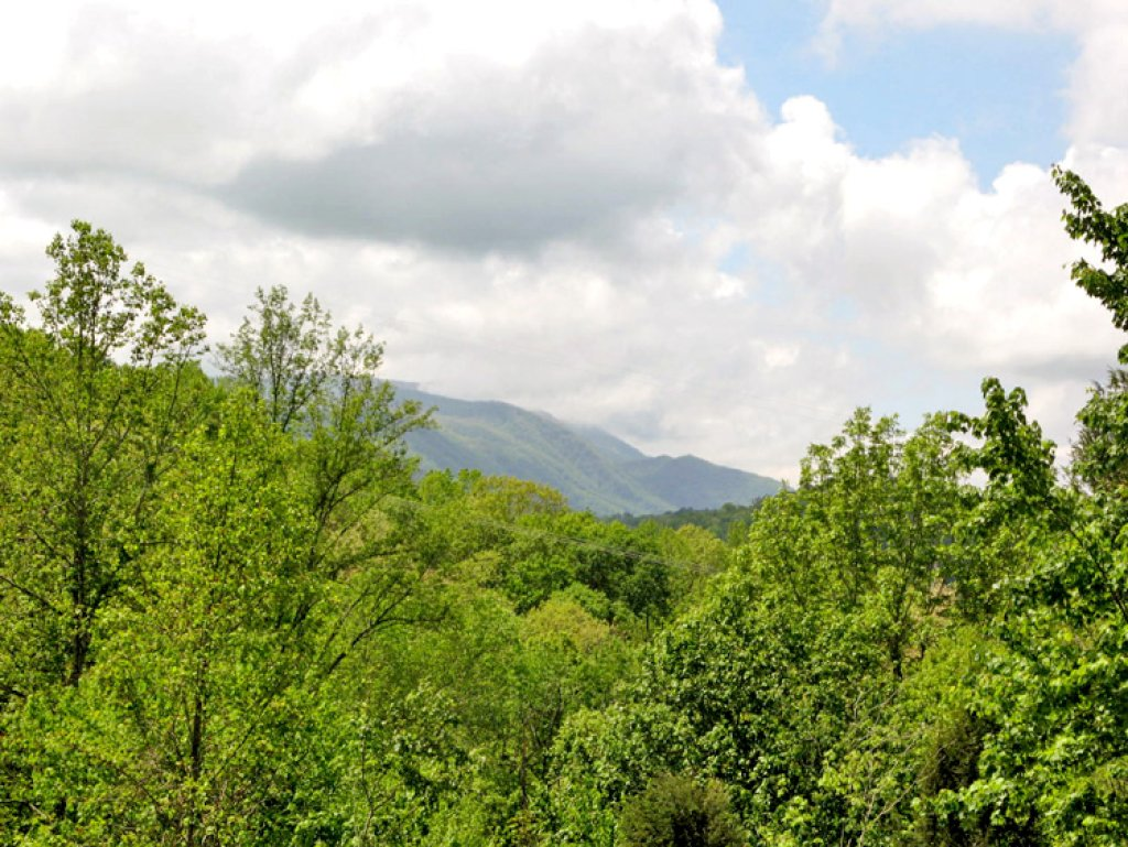 Photo of a Sevierville Cabin named Robin's View - This is the twenty-first photo in the set.