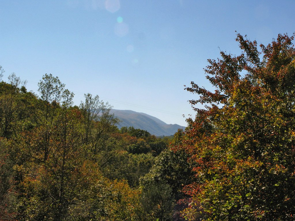 Photo of a Sevierville Cabin named Robin's View - This is the twenty-second photo in the set.