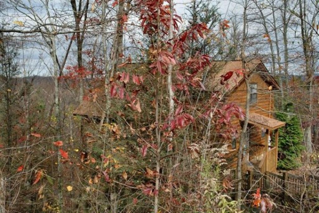 Photo of a Gatlinburg Cabin named Mountain Treehouse - This is the twenty-third photo in the set.