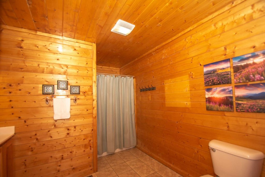 Photo of a Pigeon Forge Cabin named Absolute Dream - This is the tenth photo in the set.