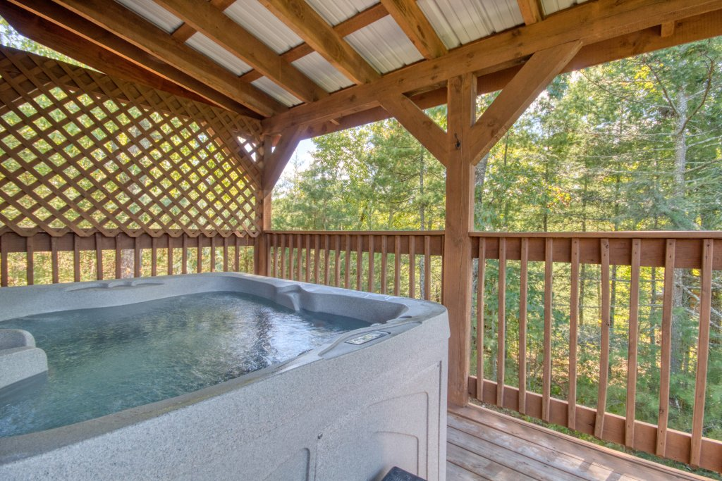 Photo of a Pigeon Forge Cabin named Dare To Bear #238 - This is the fourth photo in the set.